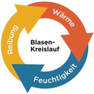 Schema des Blasenkreislaufs